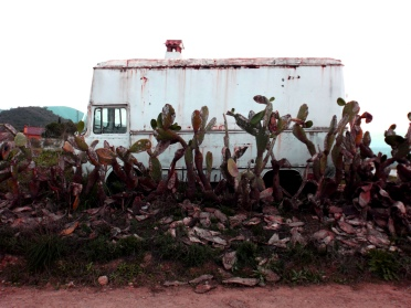 Old van guarded by cactus, in the Guadalhorce Valley