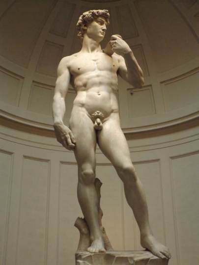 The Main Man: Michelangelo's David, Florence