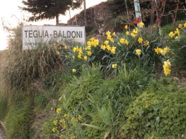 Flowers and village sign