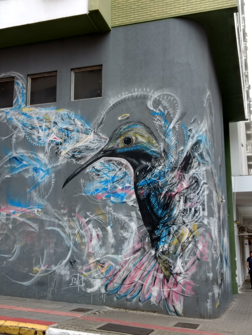 Beautiful Street Art in the Centre of Floripa