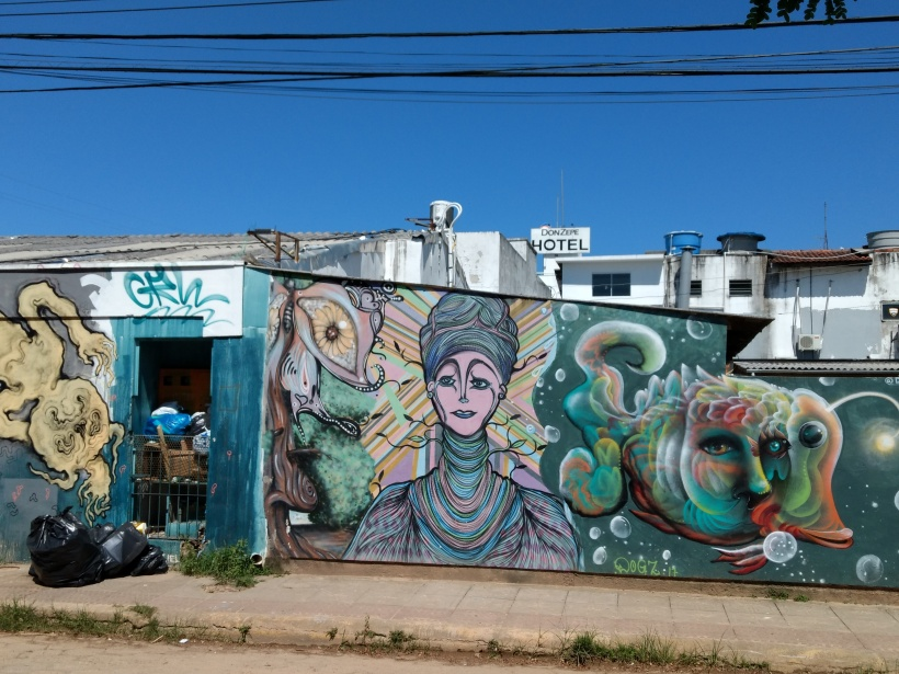 Street Art in Lagoa da Conceição